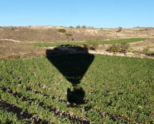 Urruti Sport Vuelo en globo aerostatico viñedos riojanos haro